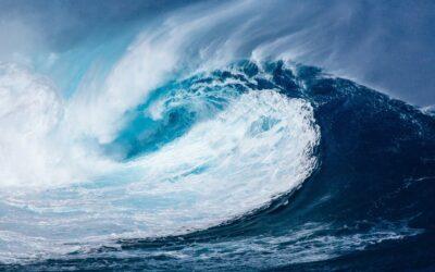 Efecto Tsunami vs Eficiencia
